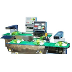 C Series Checkweigher